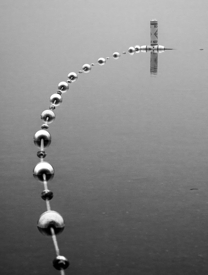 Floating On Air? by Lydia Bishop - Abstract Patterns ( rope, lakeshore, fog, black & white, moody, buoys, gloomy )