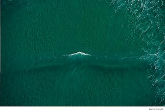 Photo: New Zealand. Photo: Burkard #surferphotos