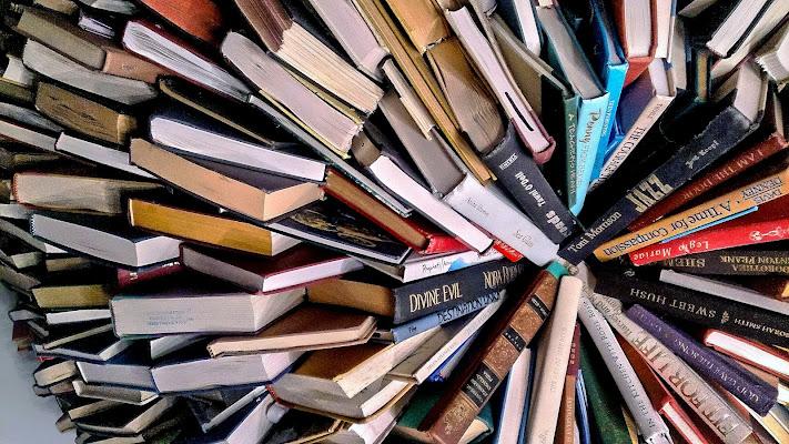 Books di Pinco_Pallino