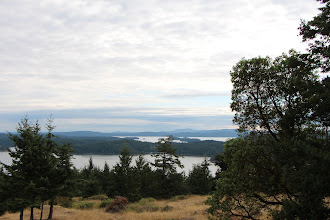 Photo: Looking SW from Turtleback