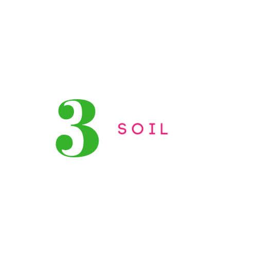 #3 SOIL