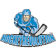 Hockey App (game)