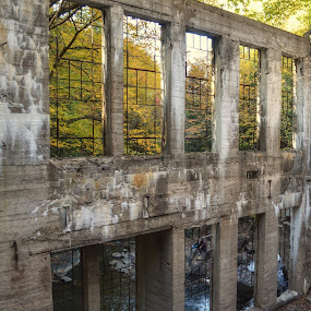 Maison Carbide Wilson by Olivier Grau - Buildings & Architecture Decaying & Abandoned ( mill, tree, gatineau park, windows, forest, cement, maison carbide, abandoned,  )