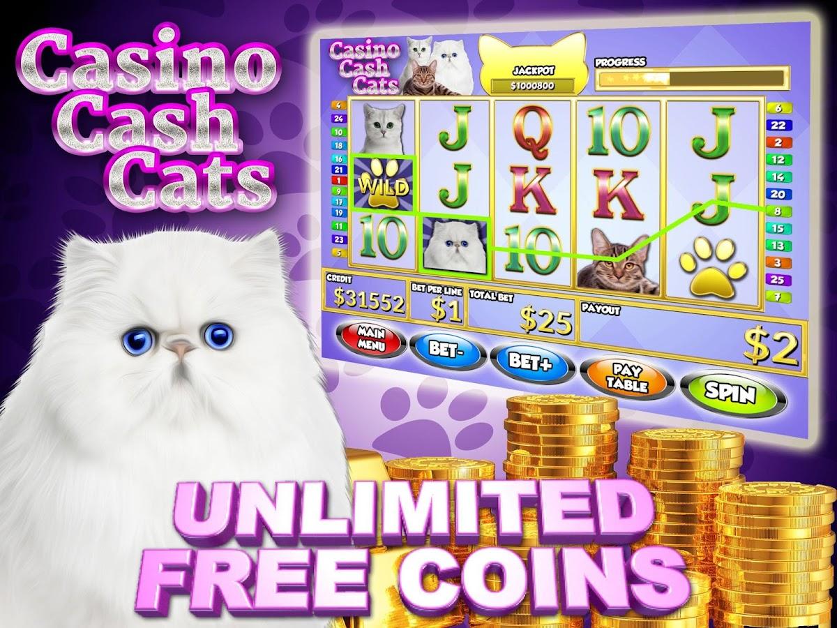 play cats slot machine free