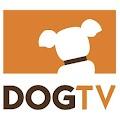 DOGTV APK
