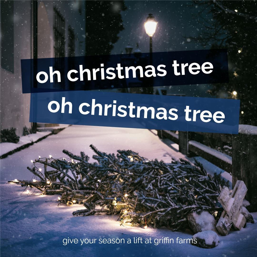 Oh Christmas Tree Time Instagram | PicMonkey
