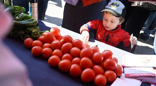 Almería será la capital del tomate durante la semana del 19 al 23 de abril