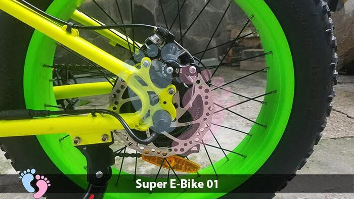 Xe đạp điện địa hình Super E-Bike 01 14