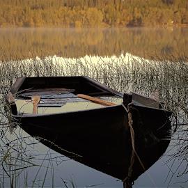 by Roald Heirsaunet - Transportation Boats