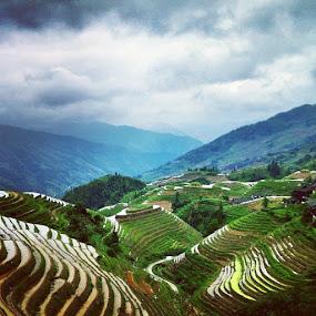 Longji Rice Terraces by Conor MacNeill - Instagram & Mobile Instagram