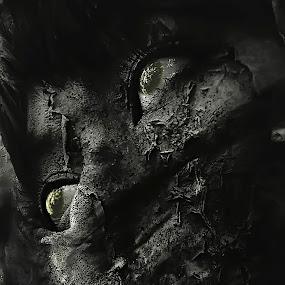 The Dark Knight by Wahyu Tri - Digital Art Abstract
