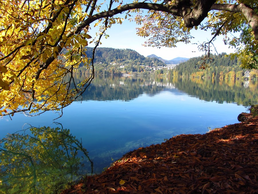 by Tim Dipple - Landscapes Waterscapes ( lake bled )