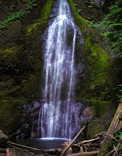 Photo: Marymere Falls, Olympic National Park.