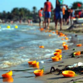 Orange Beach by Tomasz Budziak - Food & Drink Fruits & Vegetables ( tunisia, oranges, beach, africa,  )