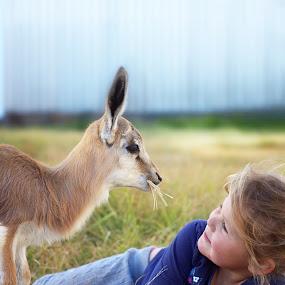 Friendship by Chrismari Van Der Westhuizen - Babies & Children Children Candids ( pets, friendship, wildlife, springbok, childhood, kids )