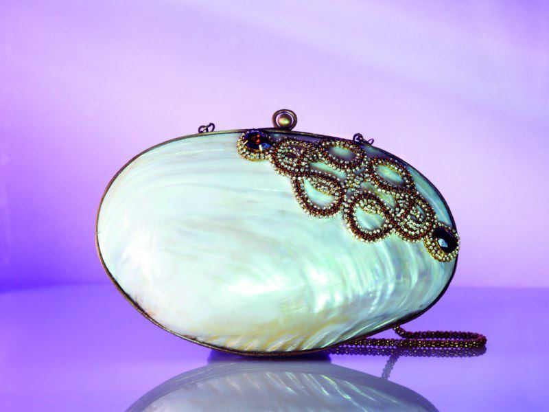 Photo: Designer handbag  www.kapriceonline.com
