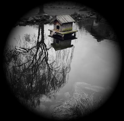 La casetta nel lago di silvergdb