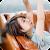 鈴木亜美 file APK Free for PC, smart TV Download