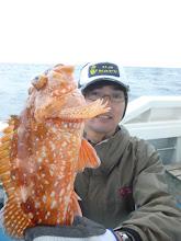 Photo: ソノハタさんは、アラカブ。