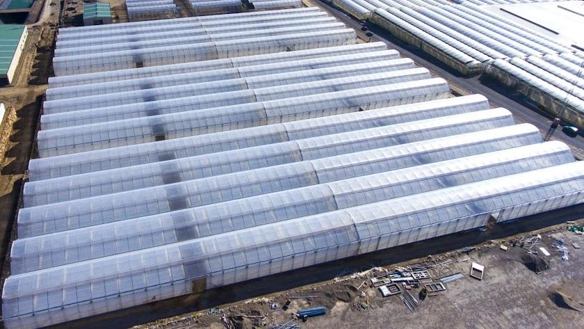 Construcción de nuevos invernaderos en Almería.
