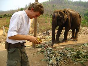 Photo: Feeding our mount some bananas