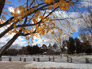 Photo: Golden leaves and blue skys over a snowy farm at Carriage Hill Metropark in Dayton, Ohio.