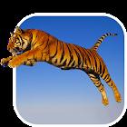 Tигры Живые Обои icon