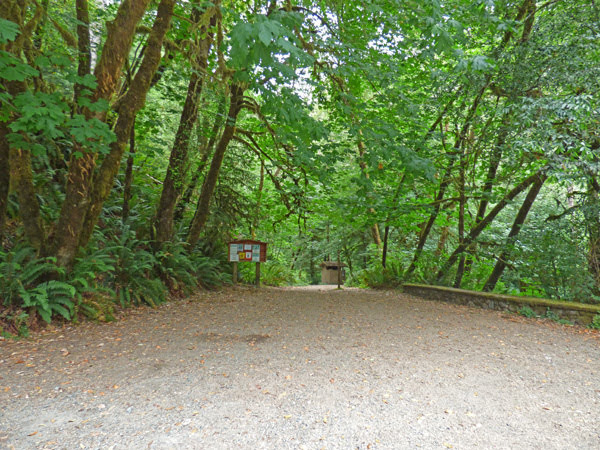 Redwood Nature Trail, Alfred Loeb State Park