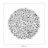 Walls (Bonus Tracks Version)
