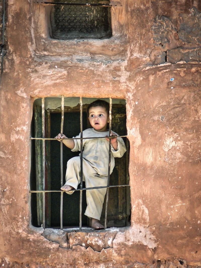 ..Yemen.. di D. Costantini
