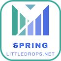 Spring Framework - Java icon