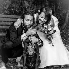 Wedding photographer Alice Gerin (alicegerin). Photo of 12.11.2015