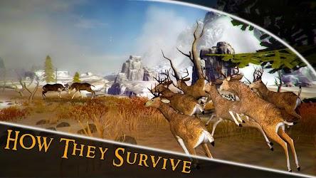 Download Whitetail Deer Hunting - Crossbow Big Hunter Calls