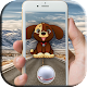 Dogs GO! (game)