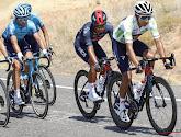 """Egan Bernal heeft geprobeerd in de zeventiende etappe, maar Roglic was te sterk: """"Ik genoot van elke kilometer"""""""