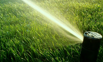 Photo: Residential Irrigation Services