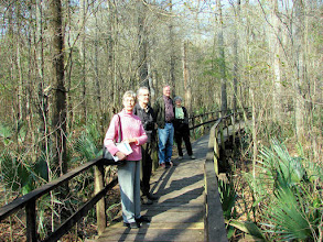 Photo: Beidler Forest is an old-growth cypress and gum swamp northwest of Charleston