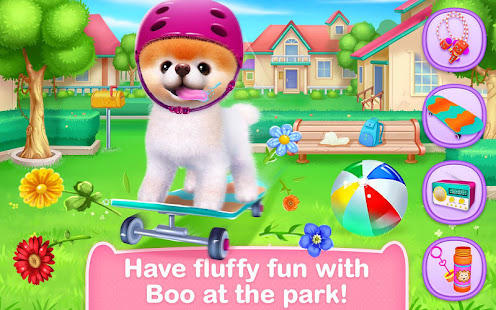Boo – The World's Cutest Dog 9