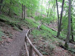 Photo: 08.Bliżej jaskini szlak się nieco wypłaszcza.