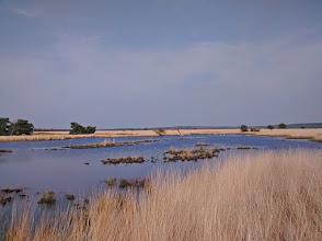 """Photo: Natuurgebied """"De IJzeren Man. Foto: Robert de Vos"""