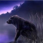 Nice Werewolf Wallpapers