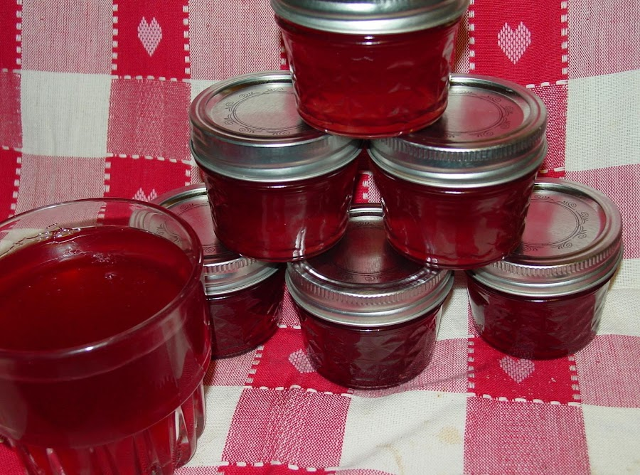 Jellyredbud Jelly In The Spring Recipe Just A Pinch Recipes