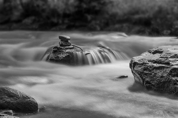 immersi nel silenzio della natura... di Carla Roganti