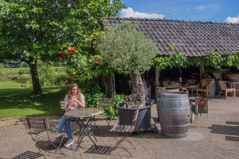 wijngaard-achterhoek