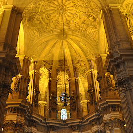 Illustration by J & M - Buildings & Architecture Other Interior ( interior, malaga, illustration, image, cathedral, view, spain )