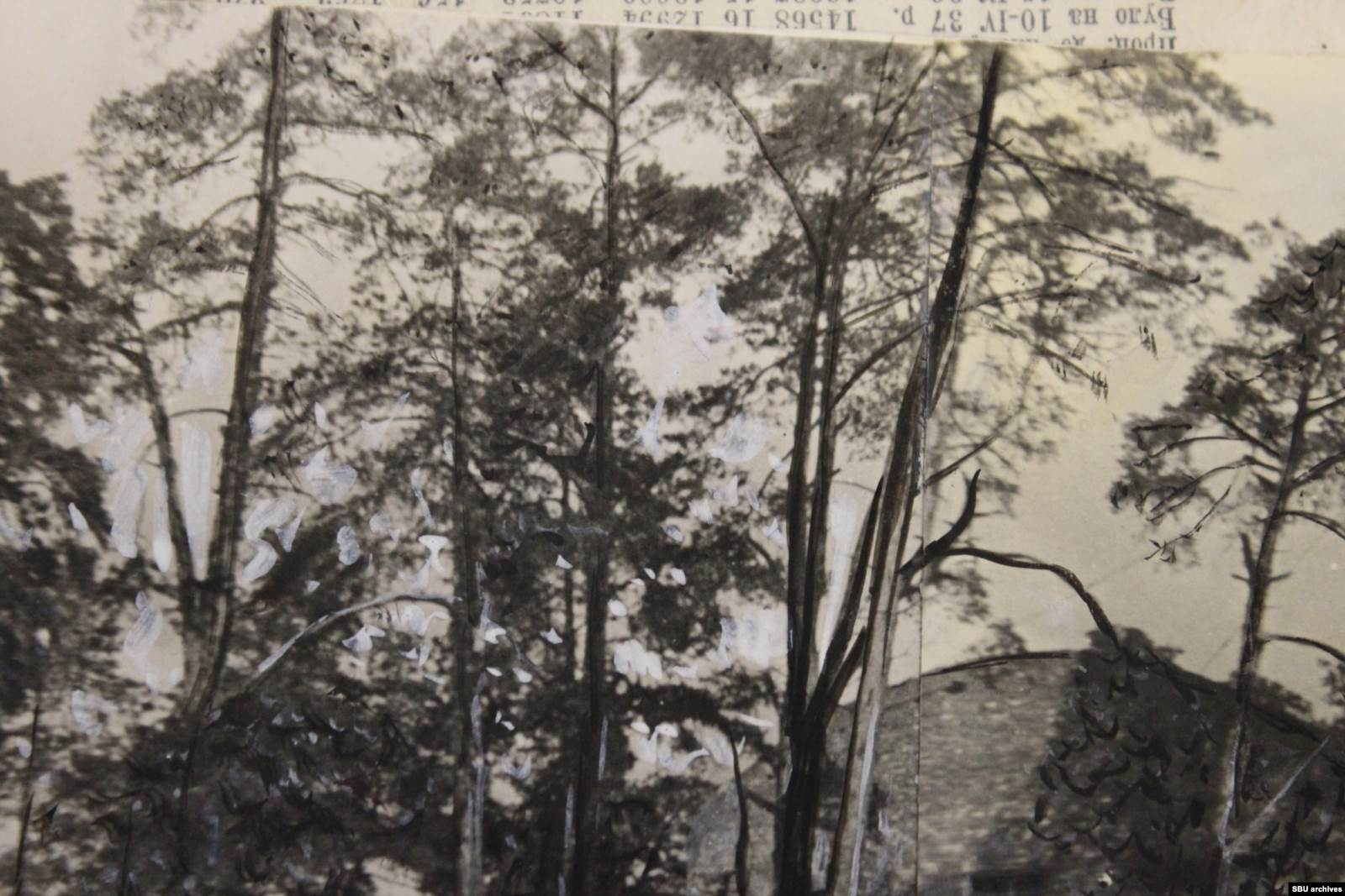Фрагмент снимка со следами ретуши Цетнаровского