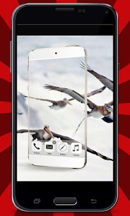 Transparent-Camera-Prank 5