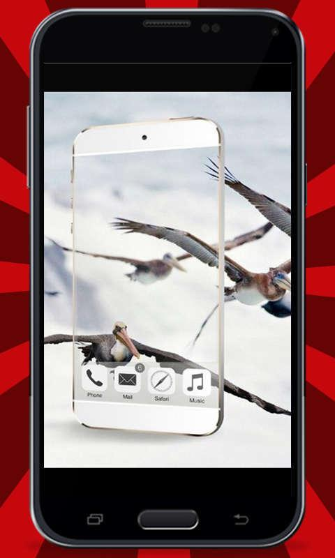 Transparent-Camera-Prank 20