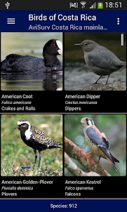 Birds of Costa Rica - náhled