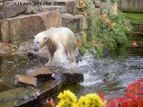 Photo: Wieder raus aus dem Wasser und...